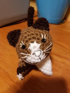this is critten-Milo for Lisa